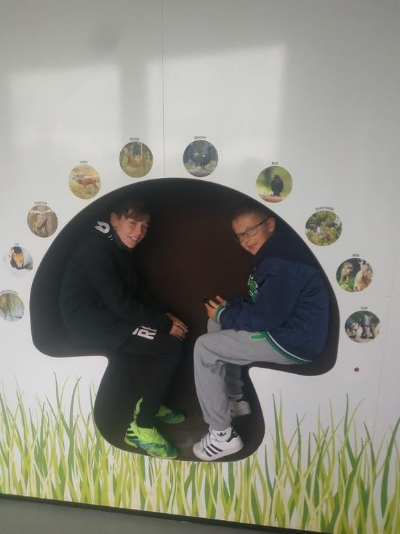 Wycieczka do centrum Rekreacji Zoom Natury w Janowie Lubelskim